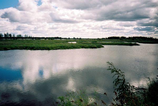 fot.64.jpg